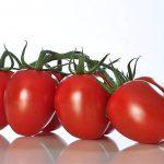 tomaten-eier-rispen
