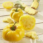 tomaten-pinedo