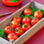 tomaten-tirouge