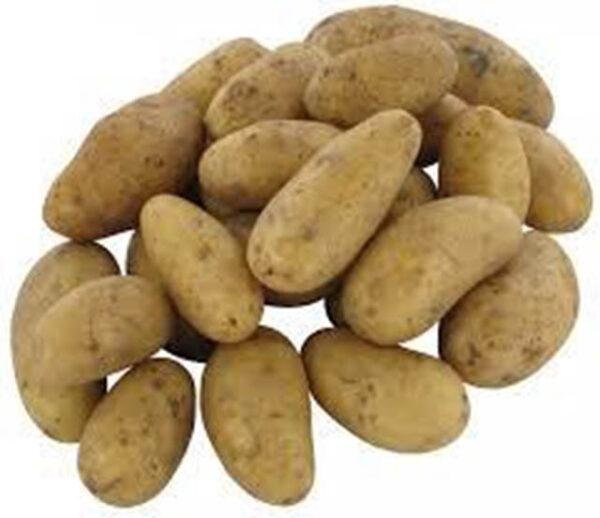 festkochende kartoffeln
